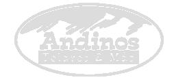 Logo Telares Andinos